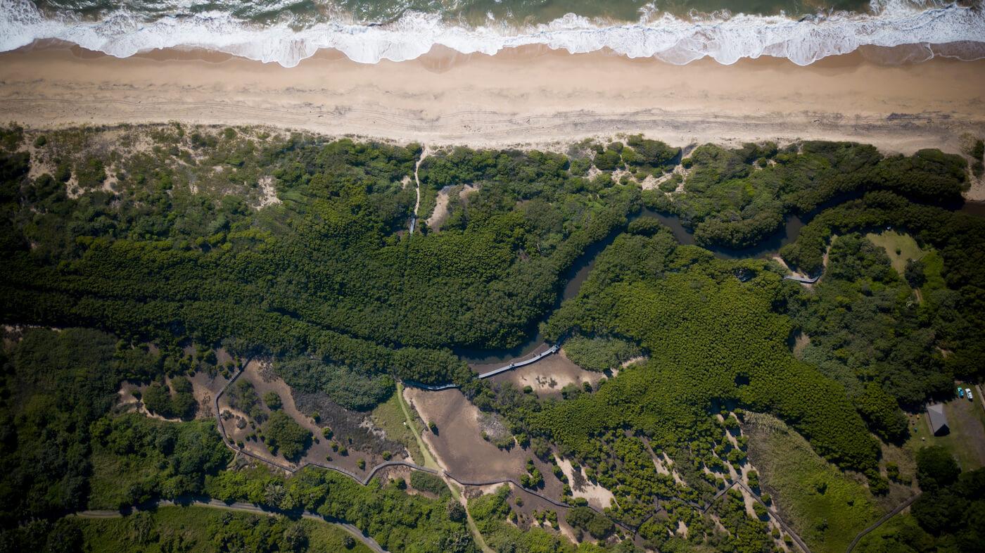 home-slider-mangroves.jpg